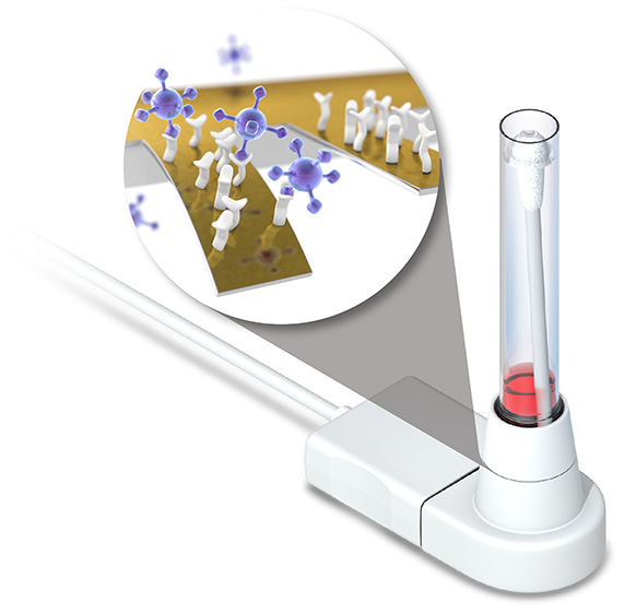 Principle of the direct SARS-CoV-2 virus antigen test